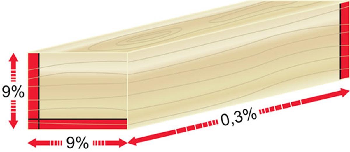 Holzmerkmale Quellen Schwinden Massunterschiede