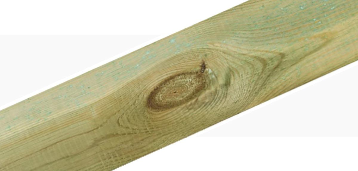 Holzmerkmale Aest und Astlöcher