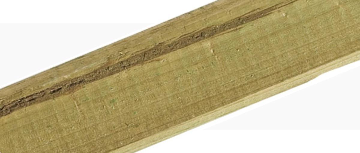 Holzmerkmale Markröhre