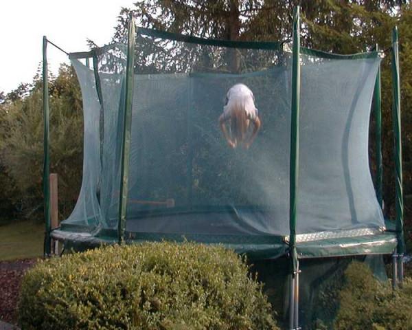 trampolin-powerset_01cV8gbDVOlxOrG