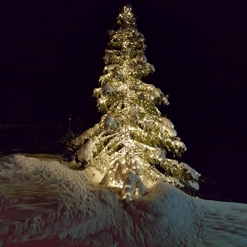 Grossbaumbeleuchtung Tannenbaum mit System 24 LED